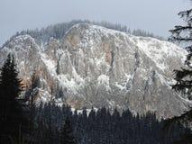 Sneeuwberglandschap met hout en sneeuw royalty-vrije stock afbeeldingen