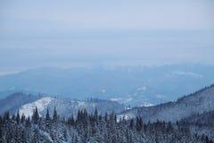 Sneeuwbergpiek in de ochtend Royalty-vrije Stock Fotografie