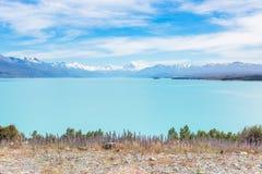 Sneeuwbergpieken over een blauw meer Stock Afbeeldingen