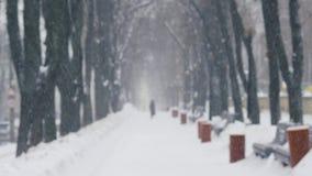 Sneeuwblizzard buiten in het park stock videobeelden