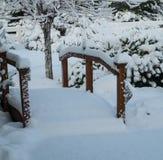 Sneeuwbrug Stock Afbeelding