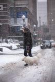 Sneeuwdag in Toronto Stock Afbeeldingen
