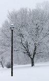 Sneeuwdaling Royalty-vrije Stock Afbeelding