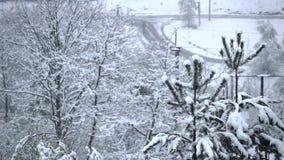 Sneeuwdalingen op sparren in nabijheid van weg Langzame Motie stock videobeelden