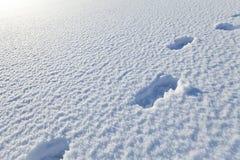 Sneeuwdeken met voetstappen royalty-vrije stock fotografie