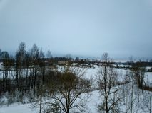 sneeuwdiebomen in bos hierboven wordt gezien van royalty-vrije stock afbeeldingen