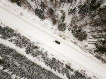 sneeuwdiebomen in bos hierboven wordt gezien van royalty-vrije stock fotografie