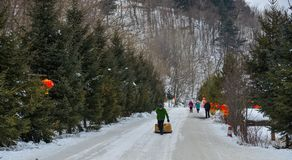 Sneeuwdorp in Mohe-Provincie, China royalty-vrije stock afbeelding