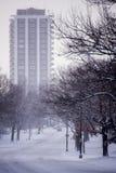 Sneeuweden park - Cincinnati, Ohio royalty-vrije stock foto's