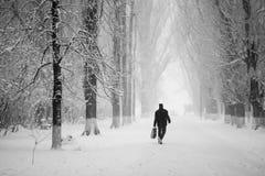 Sneeuwend landschap in het park met mensen die overgaan door royalty-vrije stock afbeelding