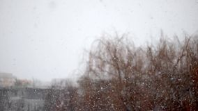 Sneeuwende dag in nadruk, hoog onduidelijk beeld stock video
