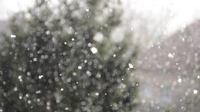 Sneeuwende samenvatting Defocused bokeh met boomachtergrond Sneeuw die met vaag de winterlandschap vallen in achtergrond stock video