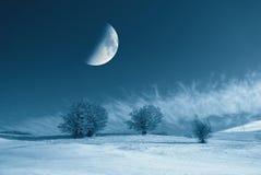 Sneeuwgebied stock foto