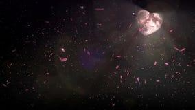 Sneeuwharten van de hemel stock footage