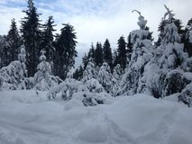 Sneeuwheuveltop Royalty-vrije Stock Afbeelding
