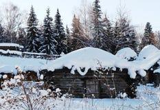 Sneeuwhut van sneeuw witte prinses Stock Foto's