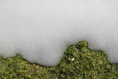 Sneeuwklokje en smeltende sneeuw Royalty-vrije Stock Fotografie