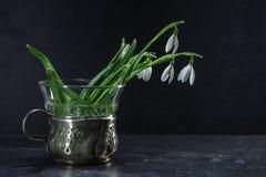 Sneeuwklokjebloemen in een uitstekende vaas van zilver en glas tegen Stock Foto