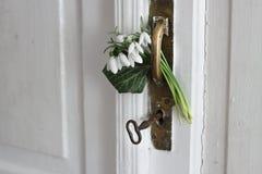 Sneeuwklokjes in de deur Royalty-vrije Stock Afbeelding
