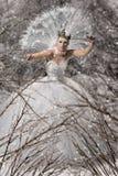 Sneeuwkoningin Stock Afbeeldingen