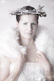 Sneeuwkoningin Royalty-vrije Stock Foto's