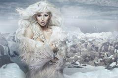 Sneeuwkoningin op het ijseiland Stock Afbeeldingen