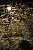 Sneeuwlamp in dark Royalty-vrije Stock Foto