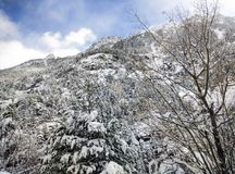 Sneeuwlandschap in de winter Royalty-vrije Stock Foto