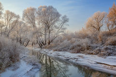 Sneeuwlandschap met berijpte bomen en rivier Stock Fotografie