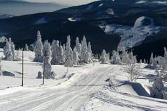 Sneeuwlandschap met bevroren sparren in de Tsjechische bergen Krkonose Stock Foto's