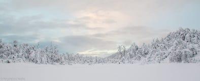 Sneeuwlandschap, Tromso Royalty-vrije Stock Afbeeldingen