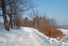 Sneeuwlandweg Stock Fotografie