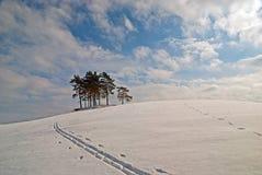 Sneeuwlandweg Stock Afbeeldingen