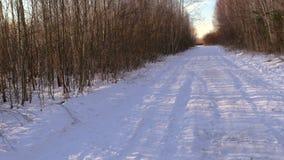 Sneeuwlandweg in bos stock videobeelden