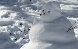 Sneeuwman in Central Park Stock Afbeeldingen