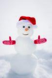 Sneeuwman in de winterpark Royalty-vrije Stock Afbeeldingen