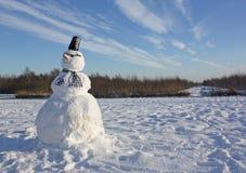 Sneeuwman in een de winterlandschap Stock Fotografie