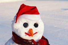 Sneeuwman met hoed, wortelneus Royalty-vrije Stock Foto's