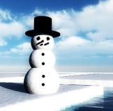 Sneeuwman op Gebroken Ijs Stock Fotografie