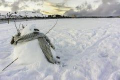 Sneeuwman in snowfield bij schemer Royalty-vrije Stock Foto