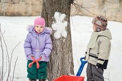 Sneeuwmankonijn op de boom Royalty-vrije Stock Foto