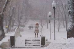 Sneeuwmeisje op de brug Stock Foto's