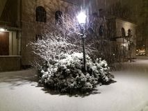 Sneeuwnacht Royalty-vrije Stock Afbeelding