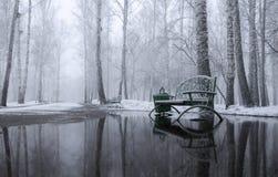 Sneeuwochtend in het park stock fotografie
