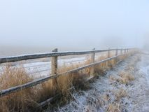 Sneeuwomheining Line in Platteland stock afbeeldingen