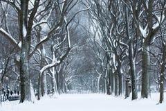 Sneeuwonweer royalty-vrije stock fotografie