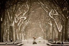 Sneeuwonweer royalty-vrije stock foto's