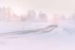 Sneeuwonweer op een weg in daglicht Stock Foto