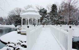Sneeuwonweer in Texas Royalty-vrije Stock Afbeeldingen