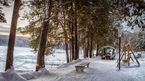 Sneeuwpark op de kust van de bevroren rivieren Royalty-vrije Stock Foto